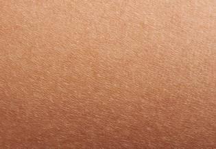 Artigo sobre dermatite atópica e pele seca - imagem principal